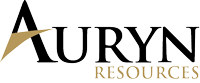 Ellis Martin Report Auryn Resources